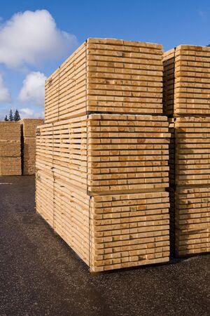 Pilas de tablones de pino apiladas para el secado