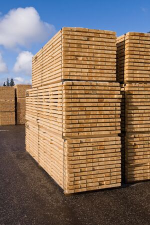 lumber: Piles of pine planks stacked for drying Stock Photo
