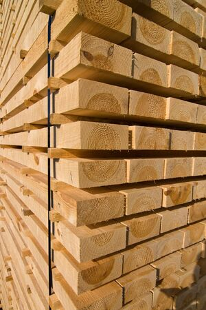 ventilated: Piles of pine planks stacked for drying Stock Photo