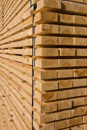 Piles of pine planks stacked for drying Stock Photo - 4801018