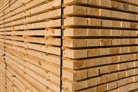 Piles of pine planks stacked for drying Stock Photo - 4801020