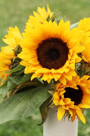 Bunch of sunflowers in a vase Stock Photo - 20859147