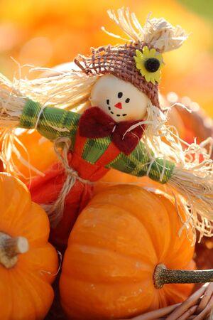 espantapajaros: El espantapájaros y pequeñas calabazas en el fondo defocised otoño Foto de archivo