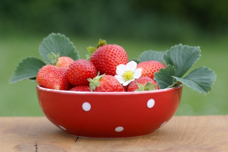Red bowl with strawberies on garden table.
