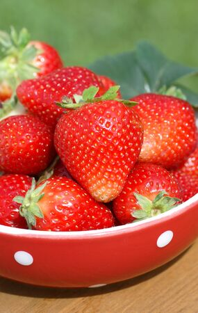 strawberies: Red bowl with strawberies on garden table Stock Photo