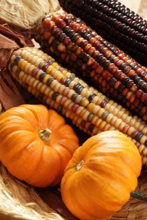 Pumpkins and indian corn close-up