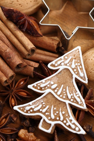 Gingerbread tree, spices, nuts and cookie cutter Stock Photo - 20868927