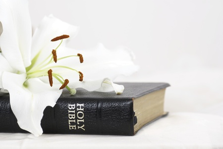 Holy Bible with white lily and copy space.
