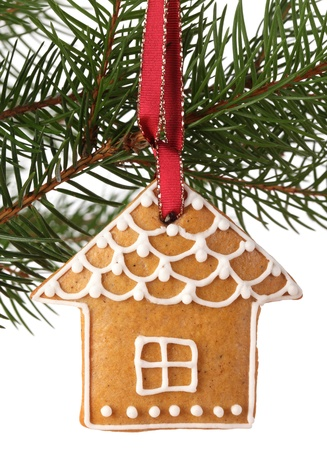 Christmas gingerbread cookie hanging on branch  photo