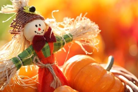 espantapajaros: El espantapájaros y calabazas sobre fondo de colores de otoño