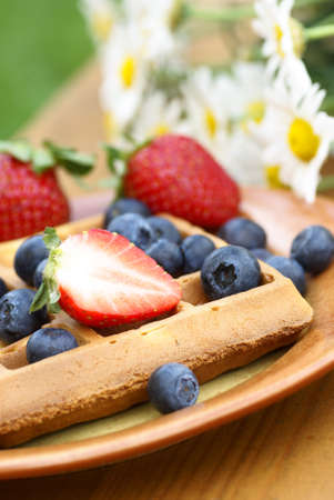 Close-up of plate with waffle and fresh fruits on garden table. photo