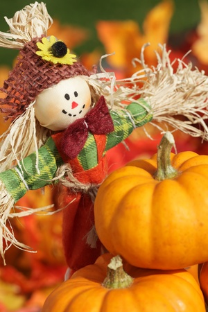 autumn scarecrow: Cute scarecrow and pumpkins on autumn leaves background. Stock Photo