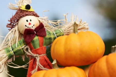 Cute scarecrow and pumpkins on blue sky background. photo
