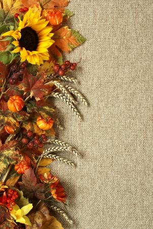 해바라기, 가을 잎과 삼 베 배경에 과일