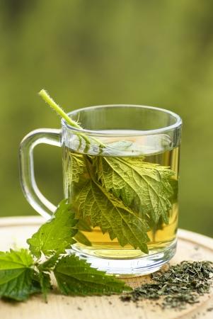 ガラスのイラクサ茶。新鮮で乾燥イラクサ 写真素材