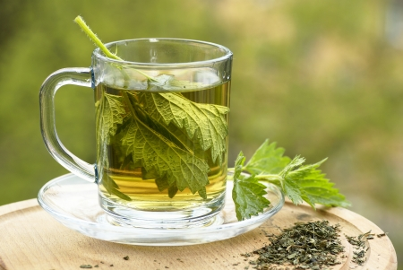 Nettle tea in glass, fresh and dry nettle. photo