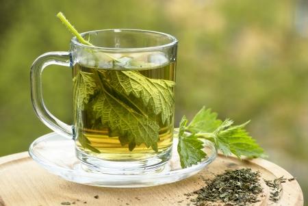 nettle: Nettle tea in glass, fresh and dry nettle. Stock Photo