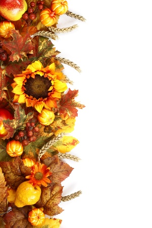 Sunflower, autumn leaves and fruits on white background.