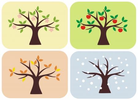 Vector illustration of tree in spring, summer, autumn and winter  Illustration
