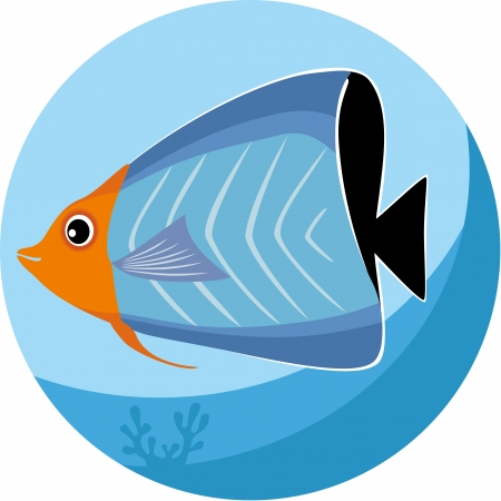 butterflyfish: Vector illustration of tropical fish Illustration