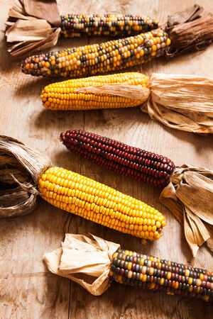 Dry corn on a wooden table. photo