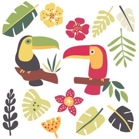 tropical plants: Toucans and tropical plants Illustration
