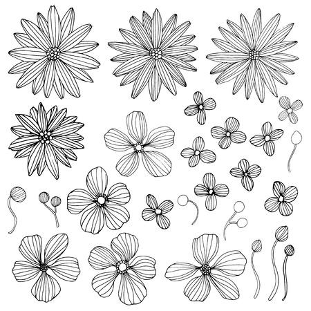Colección de mano flores dibujados