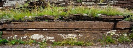 boyar: petroglyphs on a rock, in Khakassia