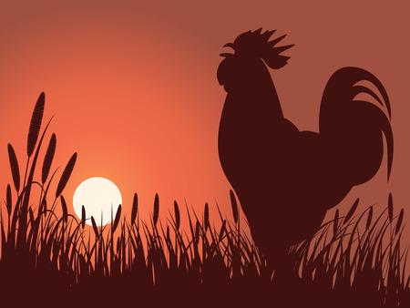 Haan begroeting zons opgang op een gazon Vector Illustratie
