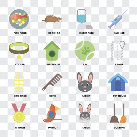 Set Of 16 icons such as Dustpan, Rabbit, Parrot, Winner, Pet house, Fish food, Collar, Bird cage, Ball on transparent background, pixel perfect