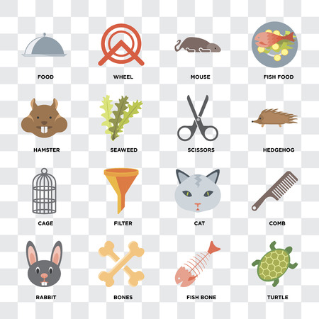 Set Of 16 icons such as Turtle, Fish bone, Bones, Rabbit, Comb, Food, Hamster, Cage, Scissors on transparent background, pixel perfect Standard-Bild - 111925286