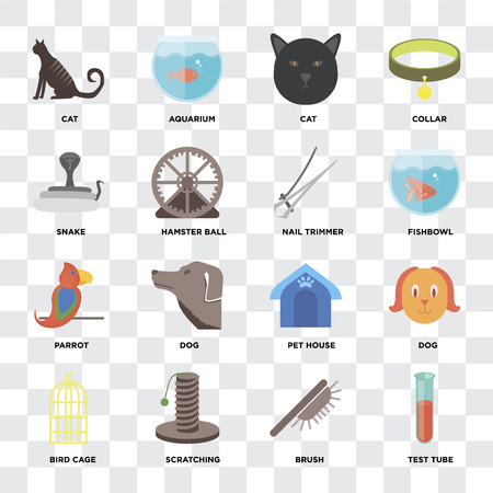 Set Of 16 icons such as Test tube, Brush, Scratching, Bird cage, Dog, Cat, Snake, Parrot, Nail trimmer on transparent background, pixel perfect