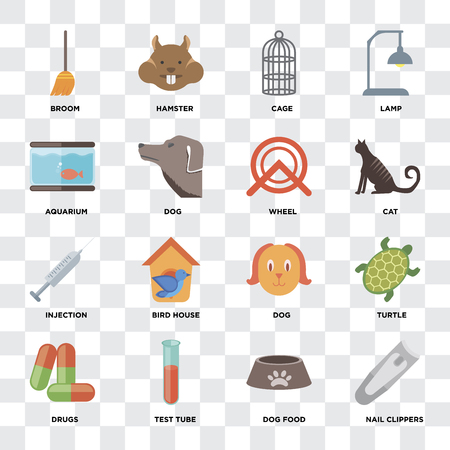 Set Of 16 icons such as Nail clippers, Dog food, Test tube, Drugs, Turtle, Broom, Aquarium, Injection, Wheel on transparent background, pixel perfect Standard-Bild - 111925565