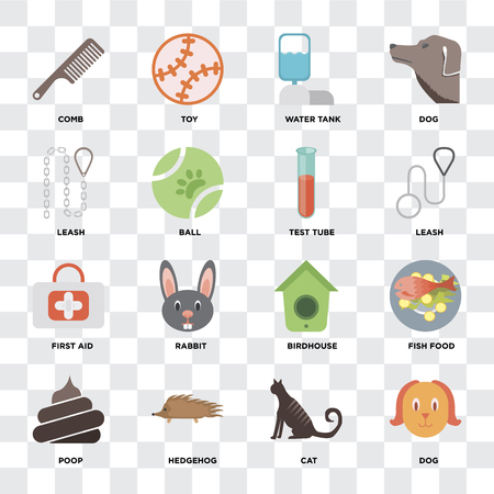 Set Of 16 icons such as Dog, Cat, Hedgehog, Poop, Fish food, Comb, Leash, First aid, Test tube on transparent background, pixel perfect Illustration