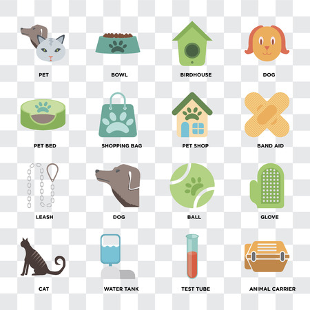 Set Of 16 icons such as Animal carrier, Test tube, Water tank, Cat, Glove, Pet, Pet bed, Leash, shop on transparent background, pixel perfect