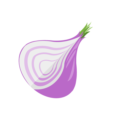 Onion icon vector isolated on white background for your web and mobile app design Illustration