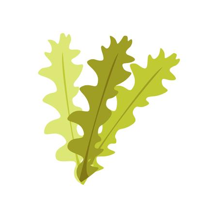 Seetang-Symbolvektor lokalisiert auf weißem Hintergrund für Ihr Web- und mobiles App-Design