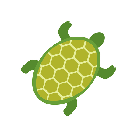 Turtle icon vector isolated on white background for your web and mobile app design, Turtle icon concept Illustration