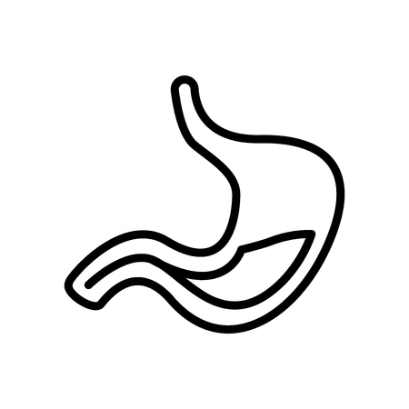 Stomach icon vector isolated on white background, Stomach transparent sign , line and outline elements in linear style