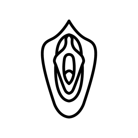 Vagina icon vector isolated on white background, Vagina transparent sign , line and outline elements in linear style Vectores
