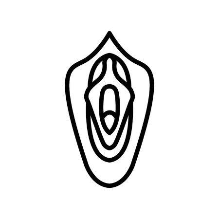 Vecteur d'icône de vagin isolé sur fond blanc, éléments de signe, de ligne et de contour transparent de vagin dans un style linéaire Vecteurs
