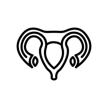 Uterus icon vector isolated on white background, Uterus transparent sign , line and outline elements in linear style Illustration