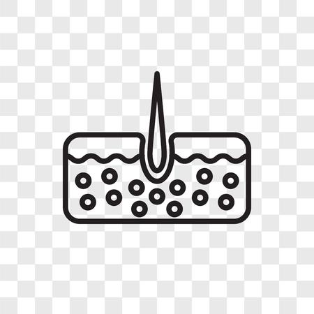 Epidermis vector icon isolated on transparent background, Epidermis logo concept