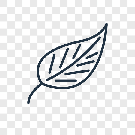 Leaf vector icon isolated on transparent background, Leaf logo concept Illustration