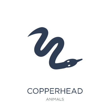 copperhead icon. Trendy flat vector copperhead icon on white background from animals collection, vector illustration can be use for web and mobile, eps10 일러스트