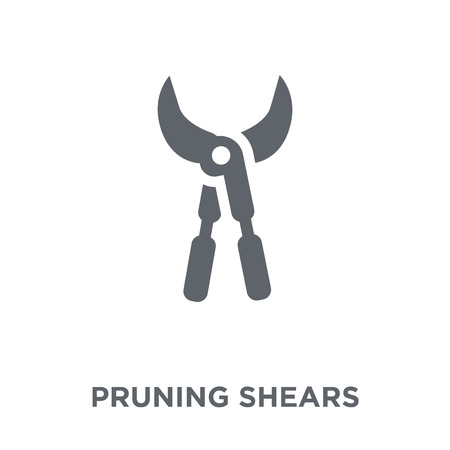 Pruning shears icon. Pruning shears design concept from Agriculture, Farming and Gardening collection. Simple element vector illustration on white background.