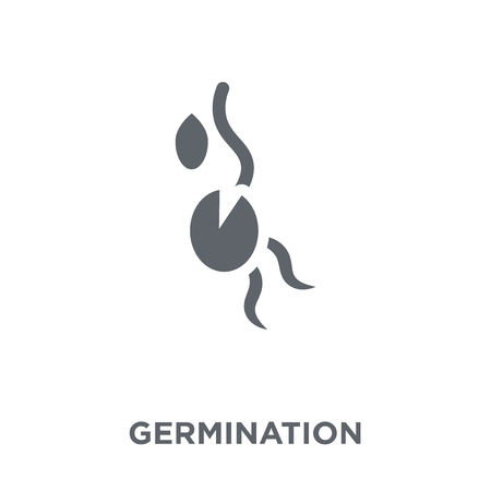 Germination icon. Germination design concept from Agriculture, Farming and Gardening collection. Simple element vector illustration on white background.