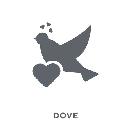Dove icon. Dove design concept from Wedding and love collection. Simple element vector illustration on white background.