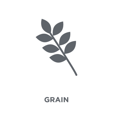 Grain icon. Grain design concept from Agriculture, Farming and Gardening collection. Simple element vector illustration on white background. Çizim
