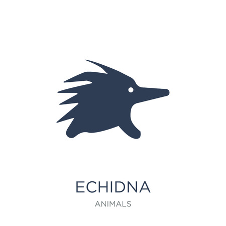 Echidna icon. Trendy flat vector Echidna icon on white background from animals collection, vector illustration can be use for web and mobile, eps10